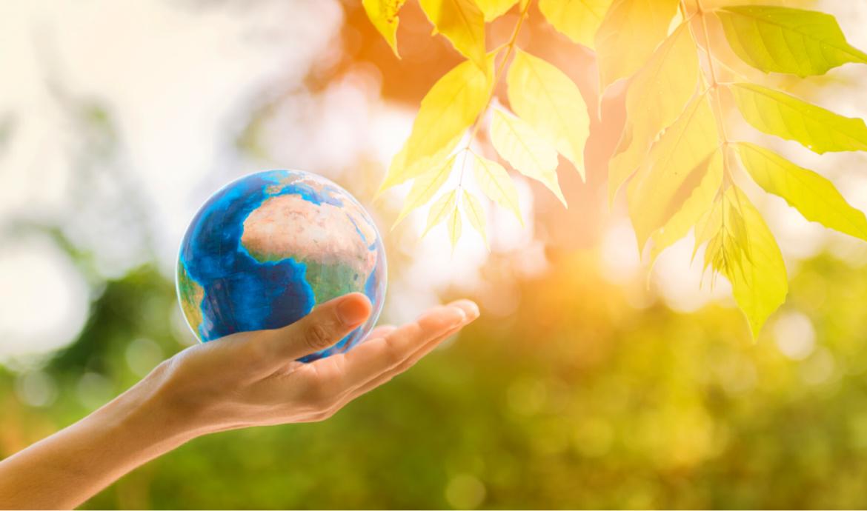 Giornata Mondiale Dell'Ambiente: la guida UNEP per il rispetto del nostro Pianeta